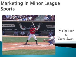 Marketing in Minor League Sports