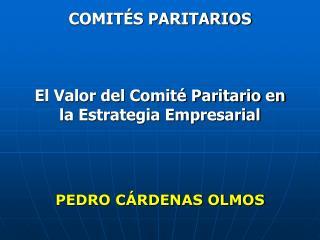 COMIT S PARITARIOS    El Valor del Comit  Paritario en la Estrategia Empresarial