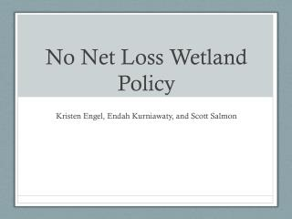 No Net Loss Wetland Policy