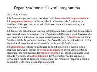 Organizzazione dei lavori: programma