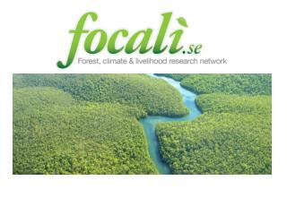 Focali Theme 2: REDD and Poverty