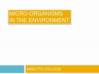MICRO-ORGANISMS  IN THE ENVIRONMENT