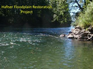 Hafner  Floodplain Restoration Project