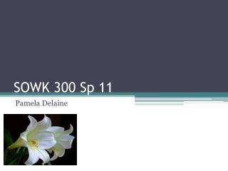 SOWK 300 Sp 11