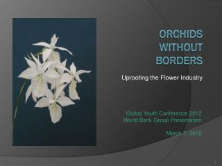Orchids  Without  Borders