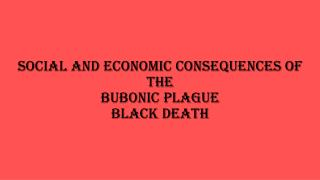 Social and Economic Consequences of the Bubonic Plague  Black Death