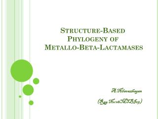 Structure-Based Phylogeny of  Metallo -Beta- Lactamases