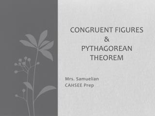 Congruent Figures &  Pythagorean theorem