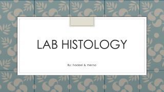 Lab histology