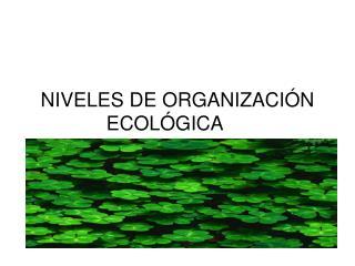 NIVELES DE ORGANIZACI N ECOL GICA