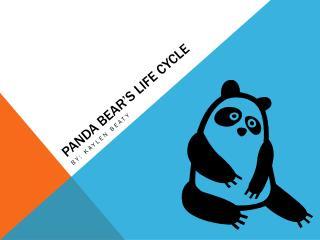 Panda Bear's Life Cycle