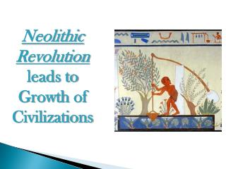 Neolithic Revolution  leads to Growth  of Civilizations