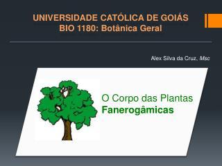 UNIVERSIDADE CATÓLICA DE GOIÁS BIO 1180: Botânica Geral