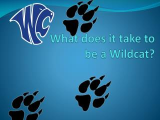What does it take to  be a Wildcat?
