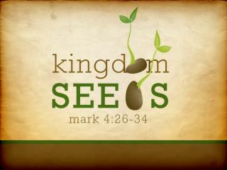 Sowing the seed of the word Acts 8: