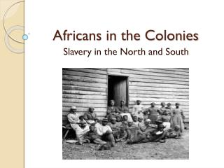 Africans in the Colonies