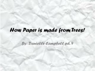 How Paper is made from Trees!