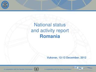 National status  and activity  report Romania