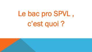 Le bac pro SPVL ,  c�est quoi ?