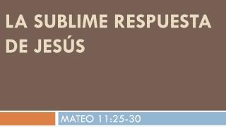 La Sublime respuesta de  Jesús