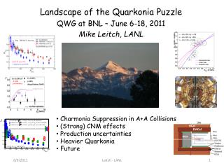 Landscape of the Quarkonia Puzzle QWG at BNL – June 6-18, 2011 Mike Leitch, LANL