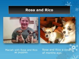 Rosa and Rico