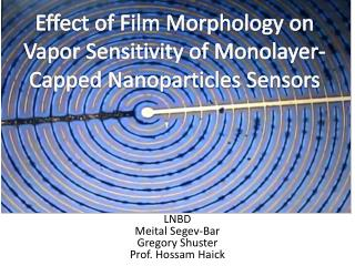 Effect of Film Morphology on Vapor Sensitivity of Monolayer-Capped Nanoparticles Sensors