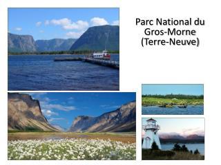 Parc National du Gros-Morne (Terre-Neuve)