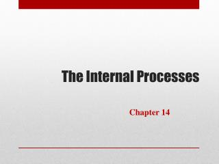 The Internal Processes