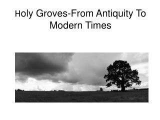 H oly Groves-From Antiquity To Modern Times