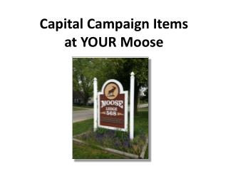 Capital Campaign Items  at YOUR Moose