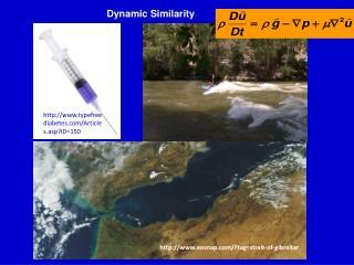 Dynamic Similarity