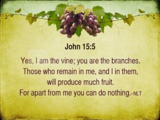 Growth in the Vineyard John 15:1-8, 16-17