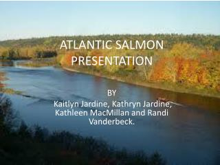ATLANTIC SALMON PRESENTATION