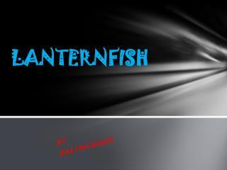 LANTERNFISH