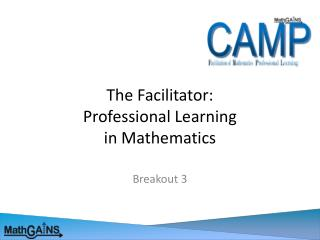 The Facilitator: Professional Learning  in Mathematics