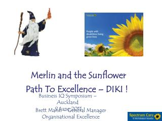 Merlin and the Sunflower