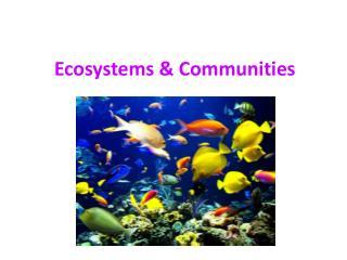 Ecosystems & Communities