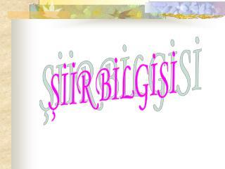 SIIR BILGISI