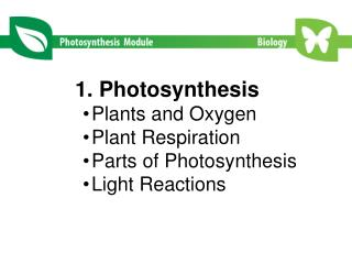 1. Photosynthesis   Plants and Oxygen Plant Respiration Parts of Photosynthesis Light Reactions