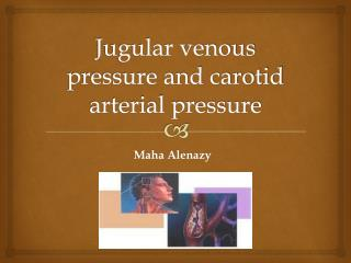 Jugular venous pressure and carotid arterial pressure