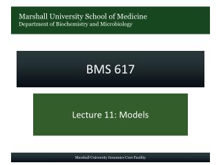 BMS 617