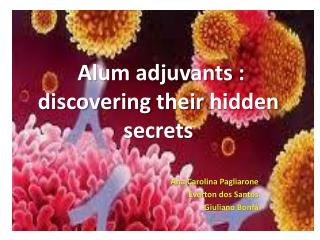 Alum adjuvants  :  discovering their hidden secrets