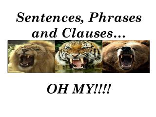 Sentences, Phrases and Clauses…