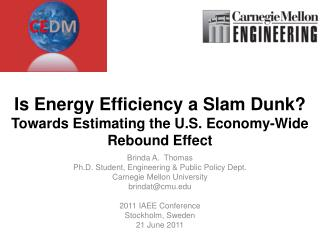 Is Energy Efficiency a Slam Dunk?  Towards Estimating the U.S. Economy-Wide Rebound Effect