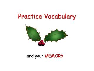 Practice Vocabulary