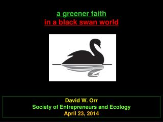 a  greener faith  in a black swan world
