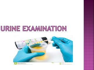Urine Examination