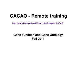 CACAO - Remote training