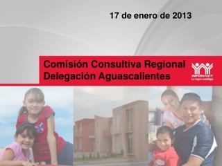 Comisión Consultiva Regional Delegación  A guascalientes
